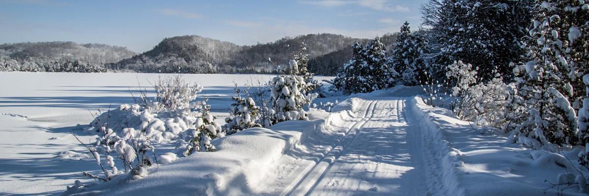 Permalink auf:Skilanglauf in Ontario